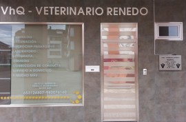 VHQ VETERINARIO RENEDO